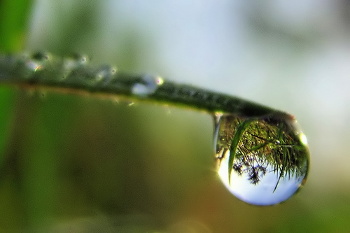 clarity waterdrop